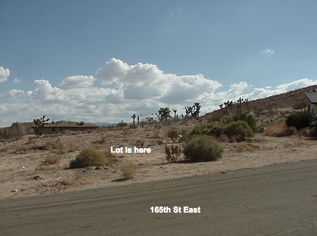 165th St East, south of Mackennas Gold Ave, Half Acre lot, Lake Los Angeles, CA  93591